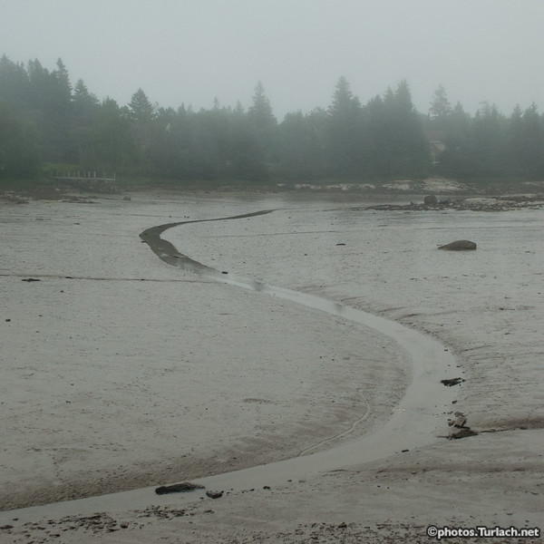 S to the low tide