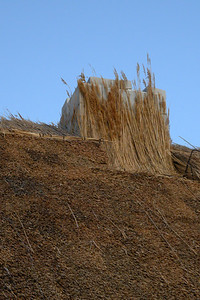 thatched house - 9
