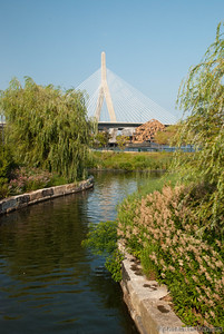 from the Charles River Park on the Cambridge side.