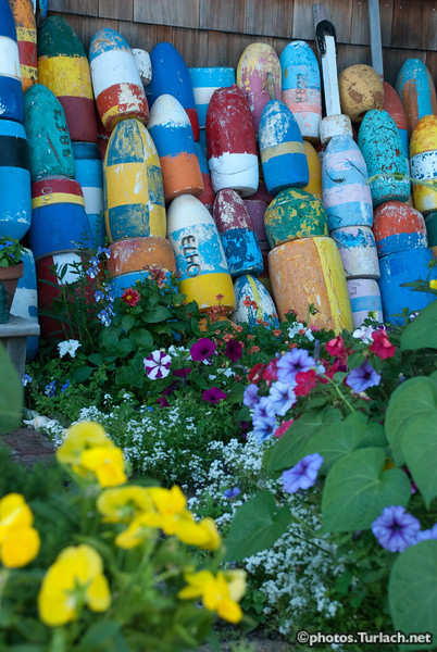 Buoys  in Rockport - 2