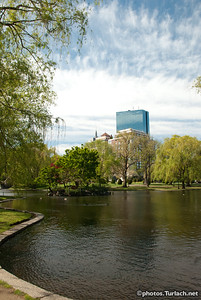 The Boston Public Gardens - 1