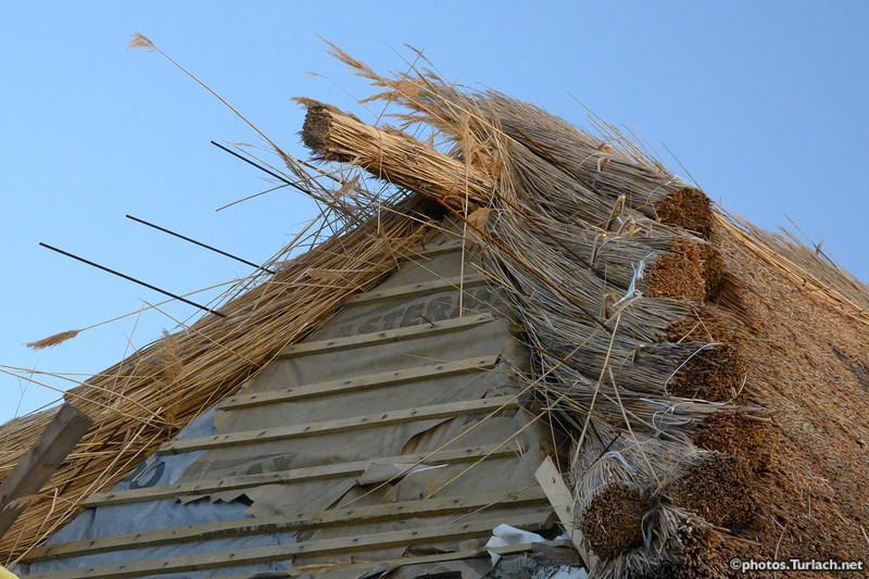 thatched house - 10