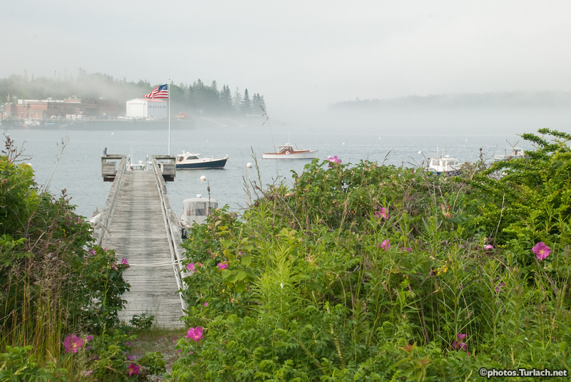 Another pier in Southwest Harbor