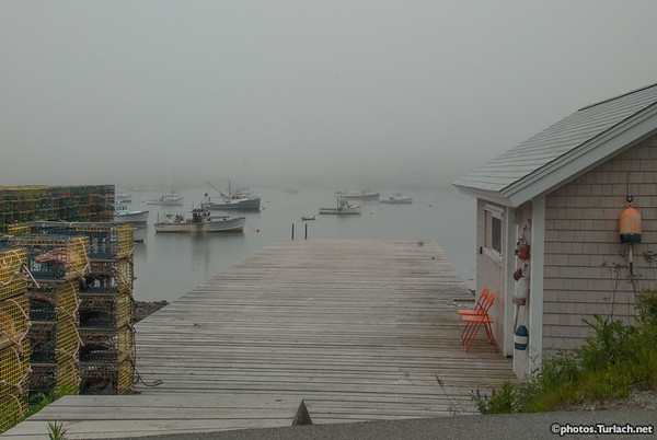 Fogg and Bass Harbor