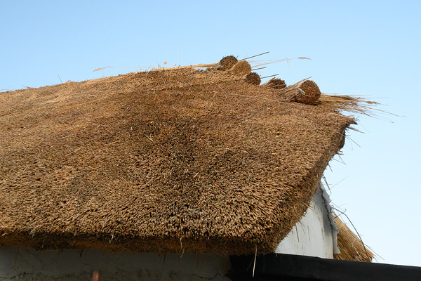 thatched house - 8