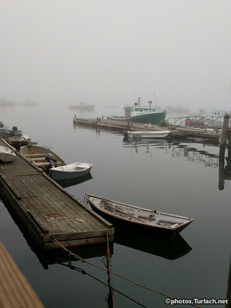 row boats and fog
