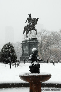 Boston Public Garden in Snow -  4