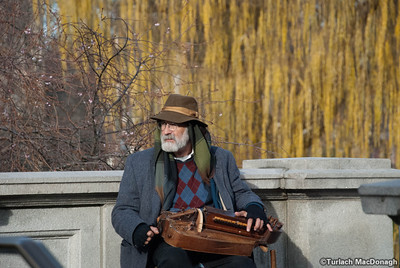 Hurdy Gurdy Guy plays the Garden - 1