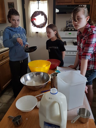 2017-03-15 Science Experiment edible