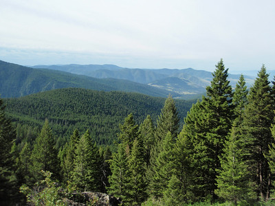 Looking at Missoula in the distance from the Stewart Peak Trail.