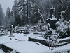 060303_3503 St  Canice Cemetary under snow