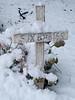 060303_3561 Six Babies under snow