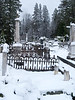 060303_3592 St  Canice Cemetary under snow