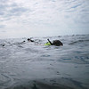 Francois snorkeling off Freeport, Bahamas.