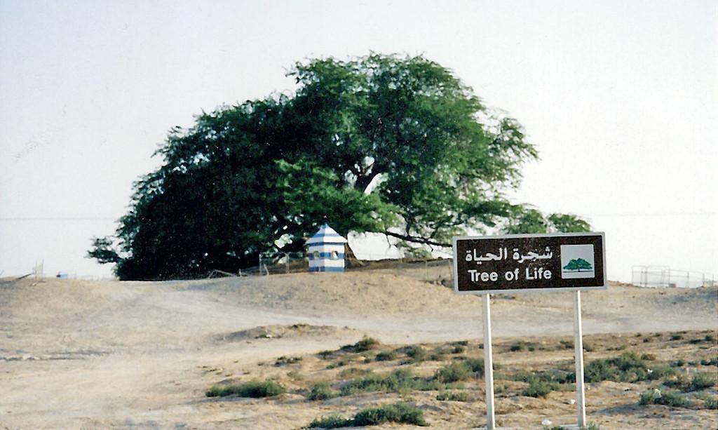 Tree of Life, Bahrain SM