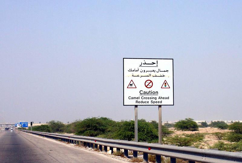 Camel Crossing Bahrain SM