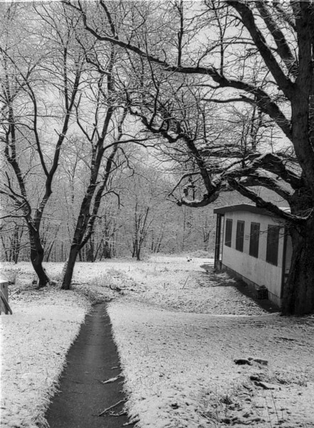 Photos courtesy of Spanish Petty Officer Manuel Borja, who trained at USNTC BAINBRIDGE from 1963 to 1964, attending Fire Control School.<br /> <br /> Winter scene along side barracks.