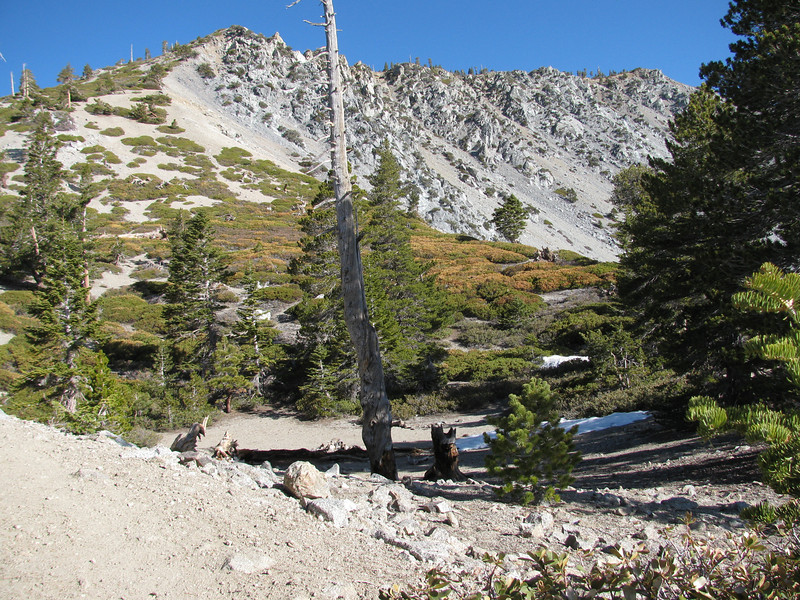 view of the top section of the bowl - all the snow has melted here.