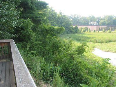Balston Beaver Pond 3