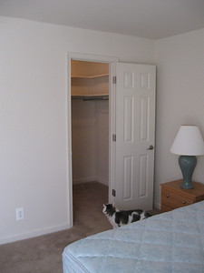 bedroom walk-in closet - it's huge!