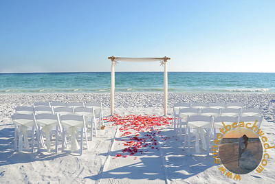 White Fabric, White Chair Sash, Coral Rose Petals