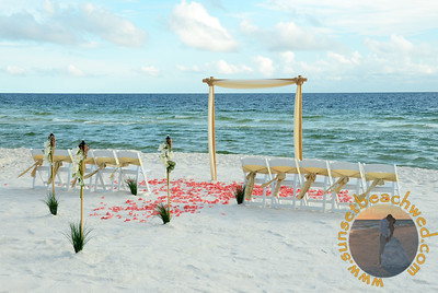 White & Champagne Fabric, Champagne Chair Sashes, Coral Rose Petals