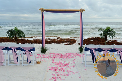 Navy Blue and Pink Fabric, Pink Rose Petals