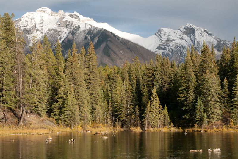 Johnson Lake, Banff Alberta