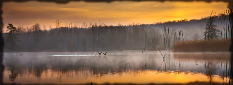 Foggy Morning at Beaver Marsh
