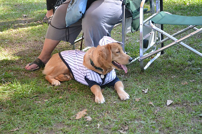 Bark for Life Phoenixville 2011