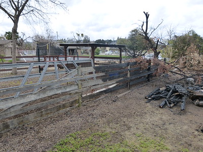 Barn Fire Feb 2015 13