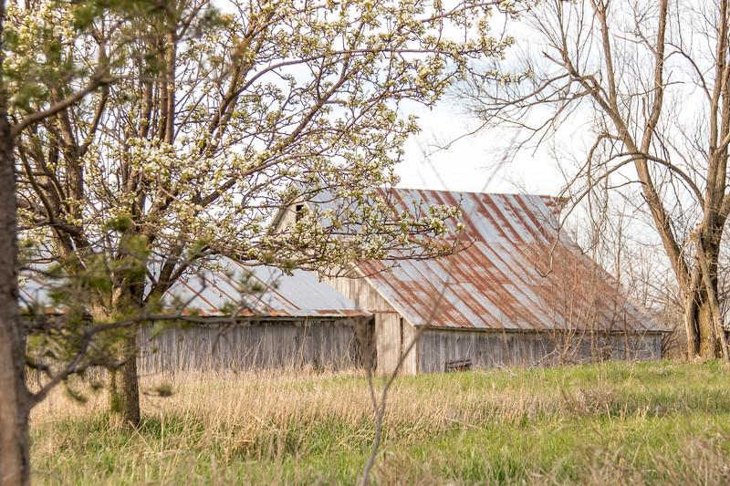 Barns and Bird-32