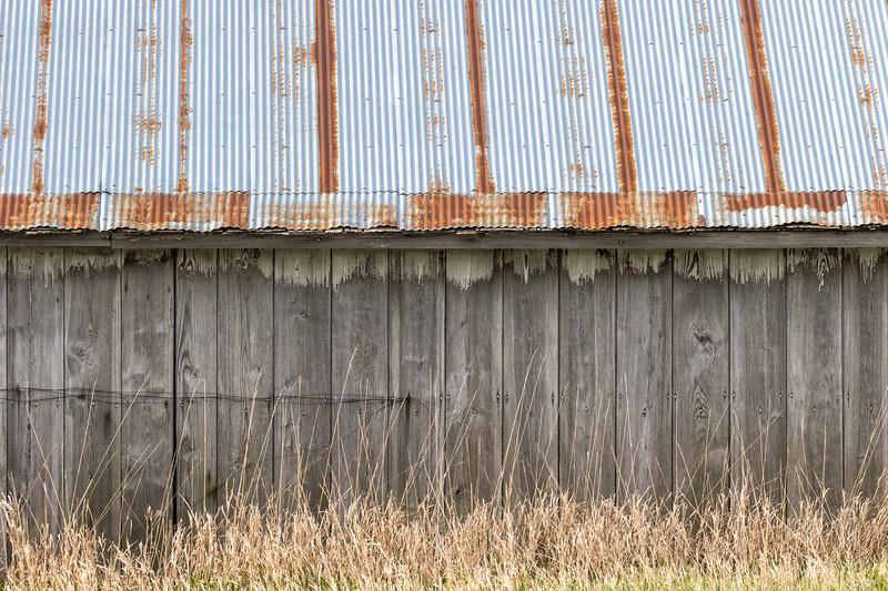 Barns and Bird-18