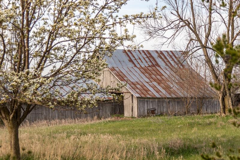 Barns and Bird-26