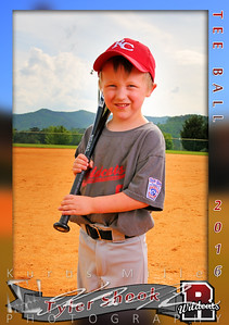 Tyler Shook T-ball