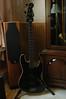 Fender Aerodyne Jazz (P/J) Bass.  Just installed new DiMarzio pickups.  DiMarzio Split P and Ultra Jazz, respectivly.