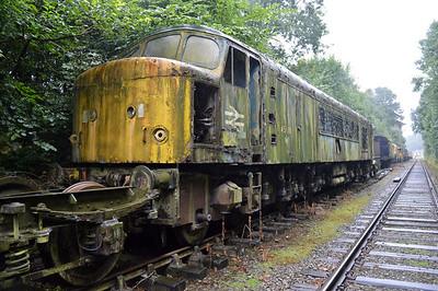 Class 45 45015  25/08/14.