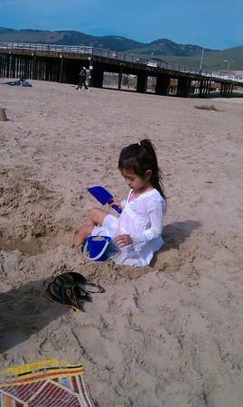 Beach 1/29/10