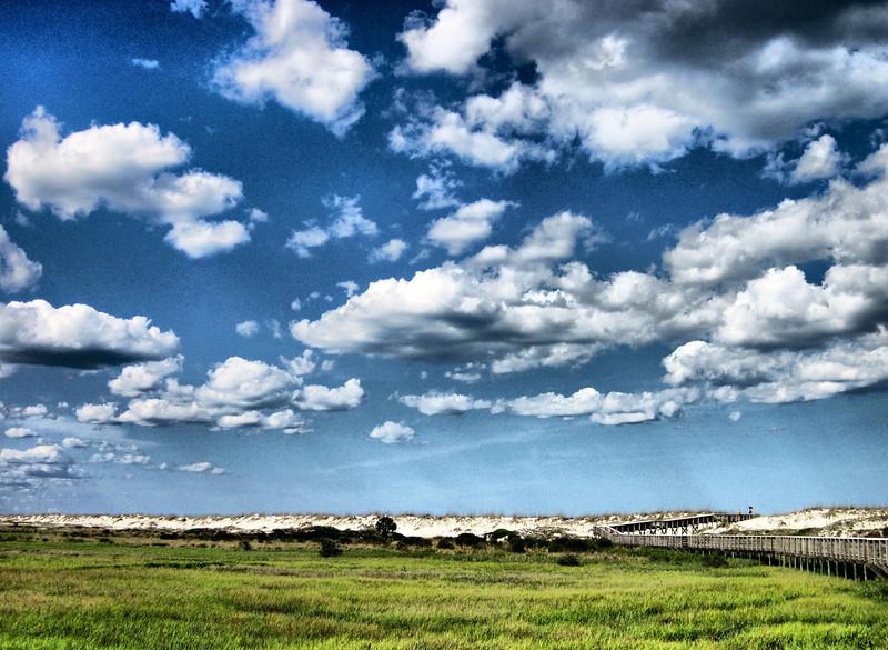 Anastasia dunes and marsh