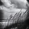 Film noir beach scene: Take 1.