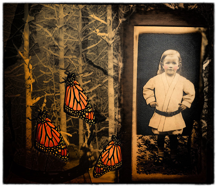 Photo Collage. So it is not a beach picture but it was done between morning and evening beach walks so it qualifies (especially since the rules are my own creation). I used old photo of unknown relative, a snowy forest background and a freshly emerged monarch.