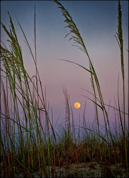 june moon.