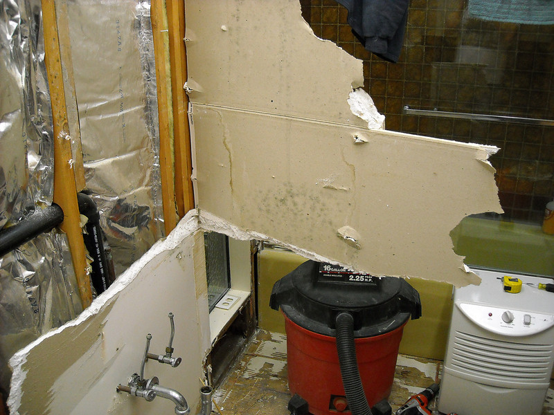 The first insurance adjuster didn't believe that the exterior walls were wet, but it was pretty easy to look and see ;-).