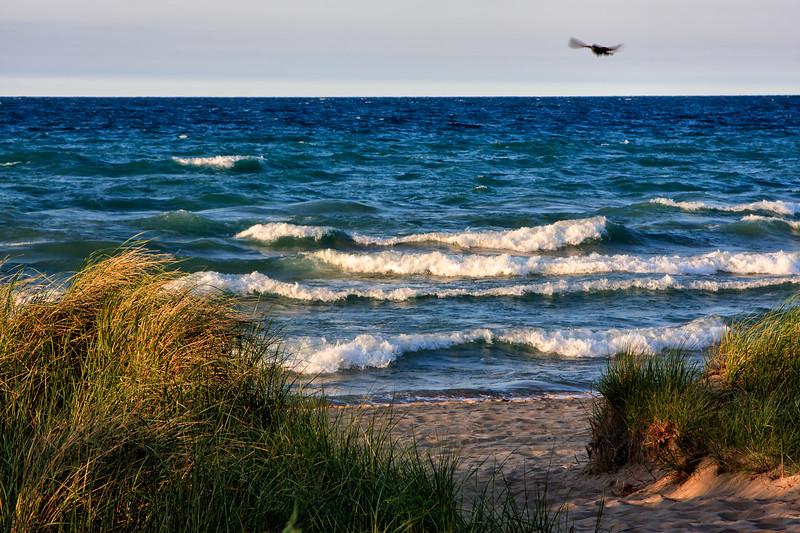 Afternoon beach light