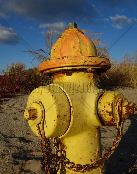 Beach Hydrant