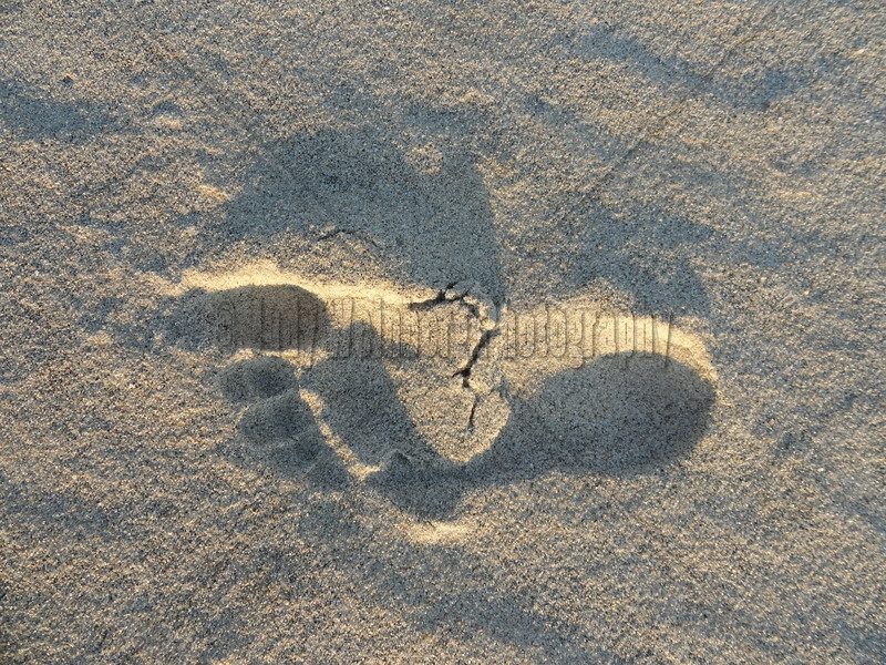 Footprint and Shadow