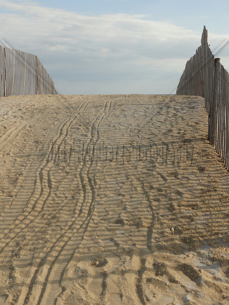 Path Over The Dune