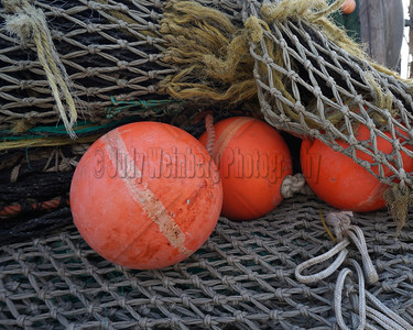 3 Orange Orbs In A Net . . . not Annette