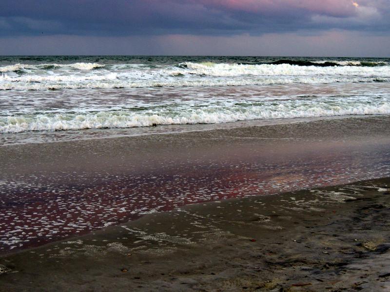 12_11_Jax Beach_008