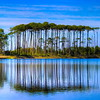 Western Lake, South Walton Florida